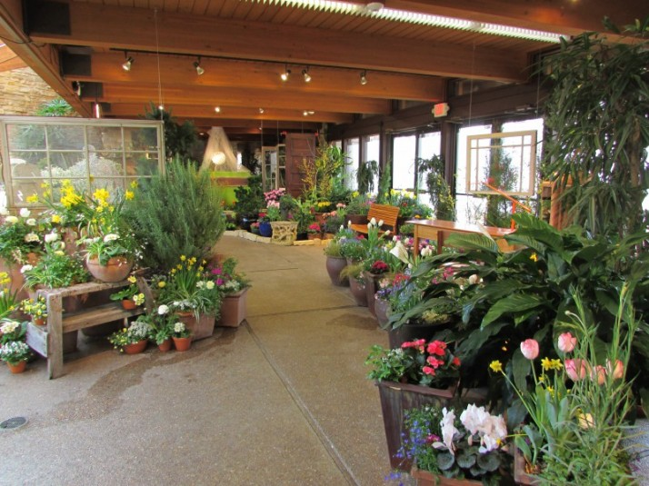 Flower Show room