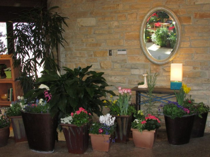 Mirror and potted plants at flower show