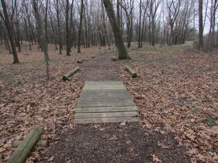 Wood bridge on Indian Mound trail