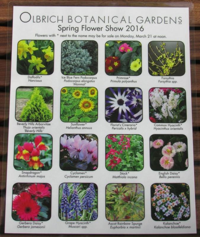Spring Flower Show 2
