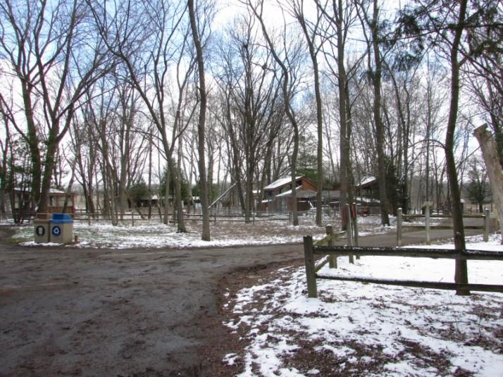 Wildlife area at Mackenzie