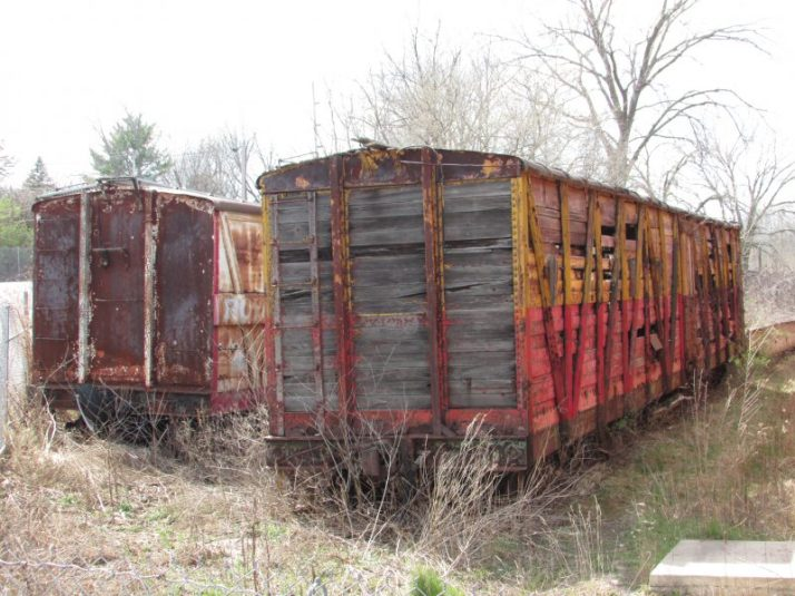 Elephant Rail car in Baraboo