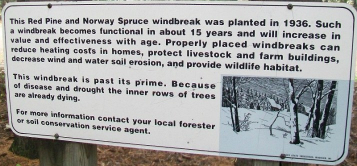 Windbreak Walk sign at Mackenzie