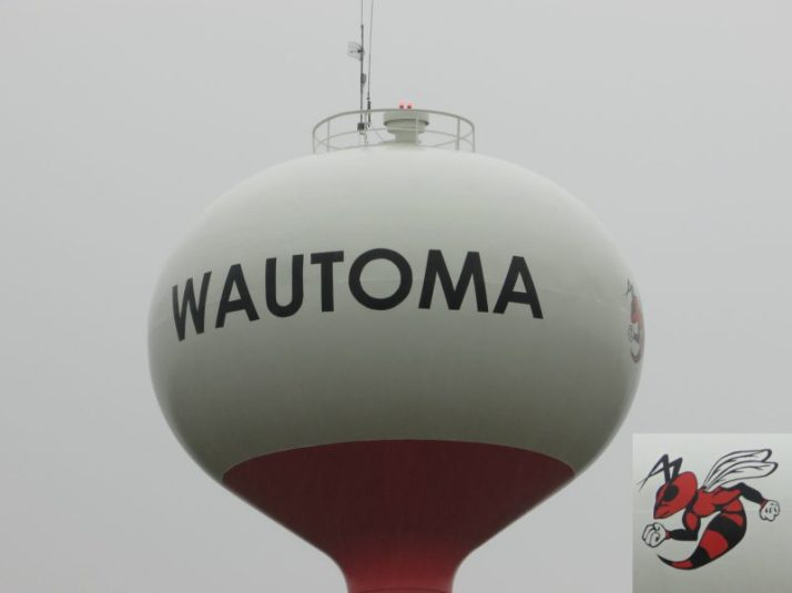 Wautoma Water tower and hornet