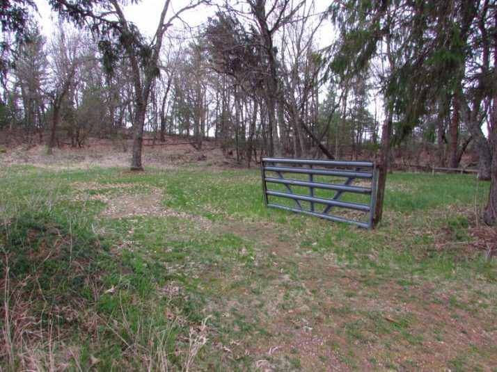 1905 Wild Rose Bank Robber grave Site location