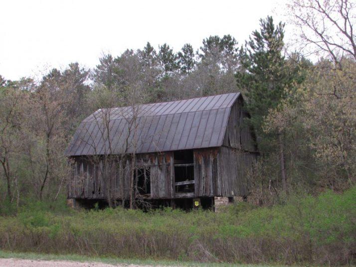 Wild rose abandoned barn