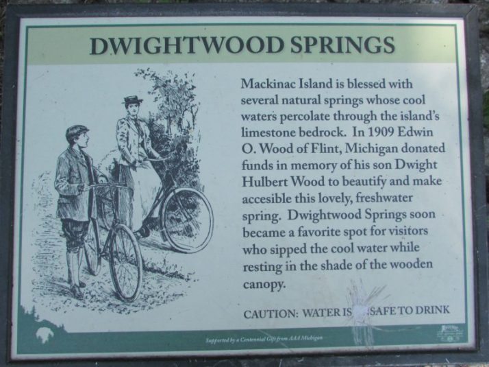 Dwightwood Springs Sign