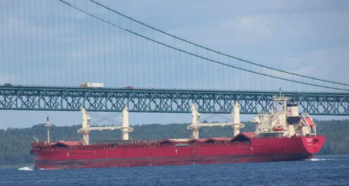 Federal Biscay Freighter IMG_9953
