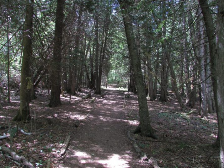 Chi-Sin trail