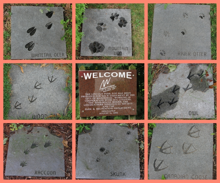 animal-footprints-at-lincoln-park-zoo