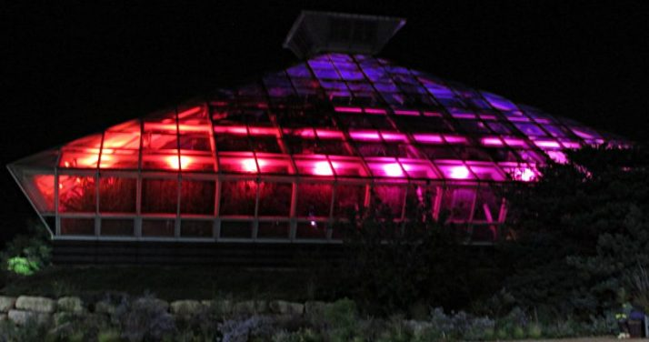 boltz-conservatory-red-and-purple