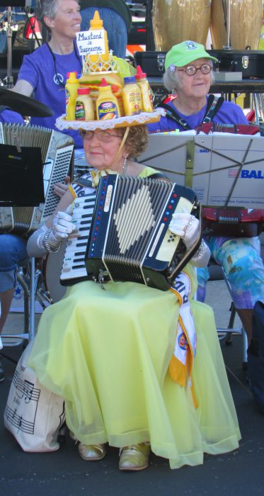 vi-bergum in Madison Accordion