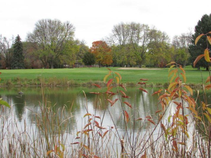 Monona Golf Course pond