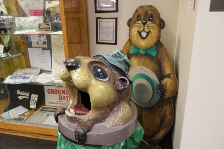 Groundhog Garbage can top