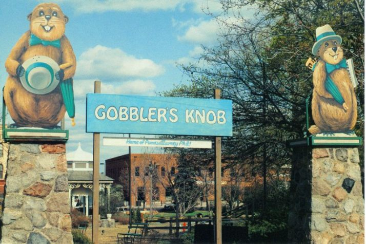 Gobbler's Knob woodstock