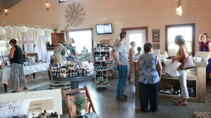 New Life Lavender And Cherry Farm In Baraboo Adventures In Travel
